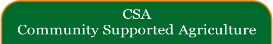 CSA